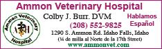 Ammon Veterinary Hospital