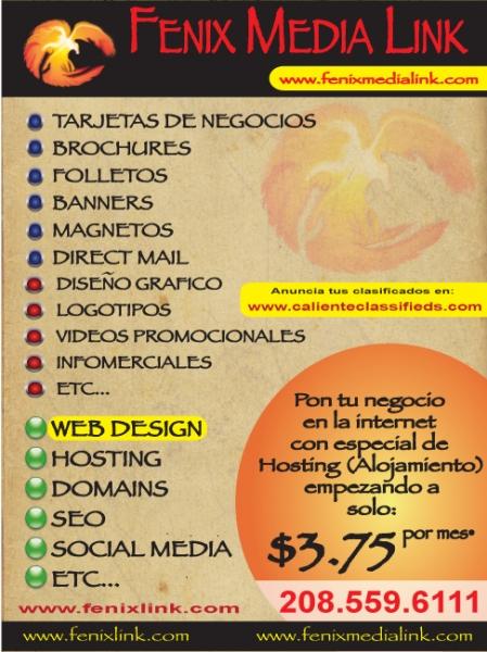 Fenix Media Link